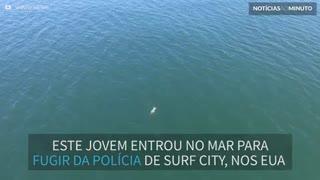 Suspeito se atira no mar para fugir da polícia e nada com tubarão