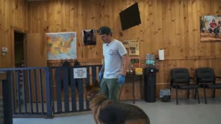 Anxious German shepherd first training