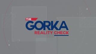 Democrats racist history. Mark Robinson with Sebastian Gorka on Newsmax