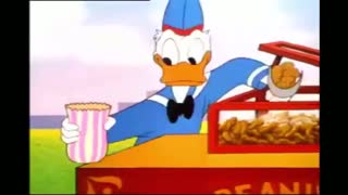 Donald Duck fighting with Flying Squirrel|Disney|Kids cartoon|Funny cartoon|Mickey Mouse