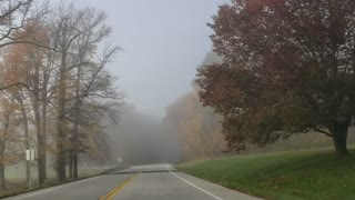 More fall leaves and fog