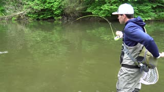 Fly Fishing for Trout on the Tulpehocken Creek