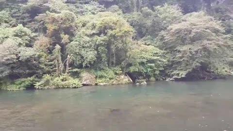Beautiful Waterfall in Jeju Island Korea