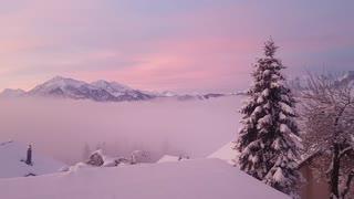 Romantic sunrise