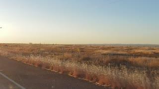 Road Trip Remote East Texas