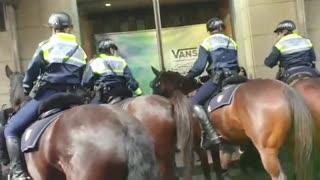 Freedom Rally Melbourne Victoria
