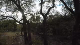 Crabapple Ranch