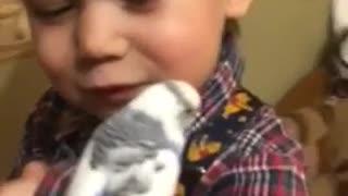 little boy vs little parrot