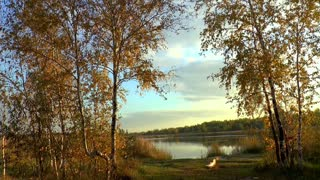 Beautiful nature.1Beautiful nature.1