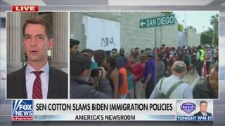 "Tom Cotton on ""America's Newsroom"""