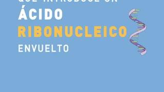 Doctora CHINDA BRANDOLINO Cuenta Que Efectos Produce la NUEVA VACUNA Para el COVID 19