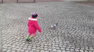 Niña intenta atrapar una paloma, falla terriblemente