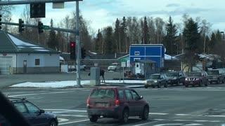 Moose Casually Crosses Busy Street