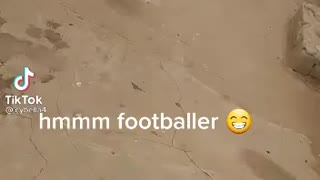 cock plays soccer