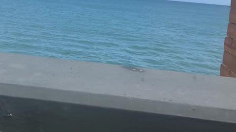 Nice Puerto Rico nice view