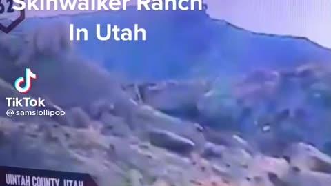 Skinwalker caught on camera 2021