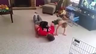 Dog Helps Her Dad With His Work-Out Routine