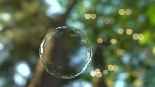 Floating Soap Bubble (Free to Use HD Stock Video Footage)