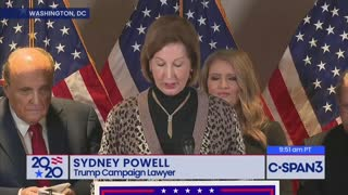 Sidney Powell Releases the Voter Fraud Kraken On Media to Their Faces0