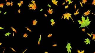 Fall music