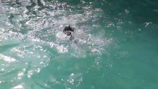 the boy swimming
