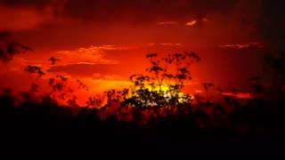 Healing Music Meditation Music Sleeping Music Spa Music Insomnia Music