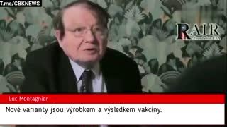 Luc Montagnier o Covid-vakcine