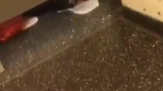 Woman gives herself a pedicure in bathroom stall floor