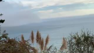 Fog rolling in over the Ocean