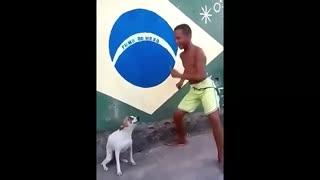 Perrito bailando feliz