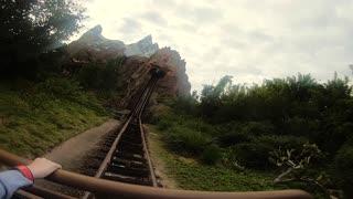 Walt Disney World Animal Kingdom Expedition Everest