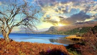 Beautiful Autumnal Lake