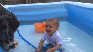 laughing babies playing with dog and water