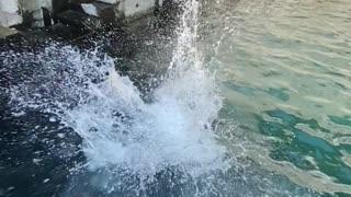 Nice backflip in the water