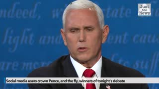 Social media users crown Pence, and the fly, winners of tonight's debate
