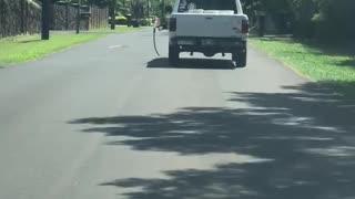 Car Takes Gas Pump for a Drive