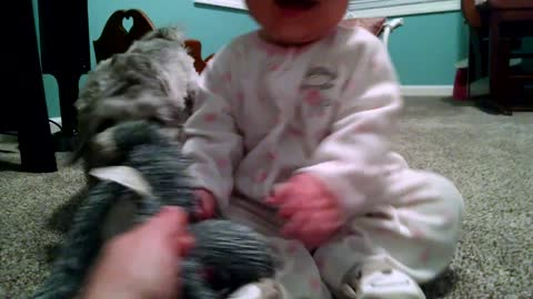 Playful puppy makes adorable baby giggle