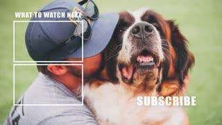 BIGGEST OVERLOOKED DOG TRAINING COMMAND