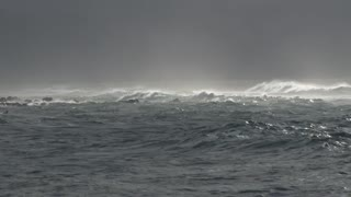 Strong Winds Makes Strong WAVES