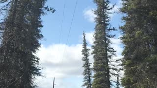 Going to my property in the Copper Valley, Alaska
