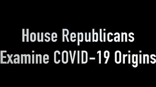 House Republicans Examine Covid-19 Origins