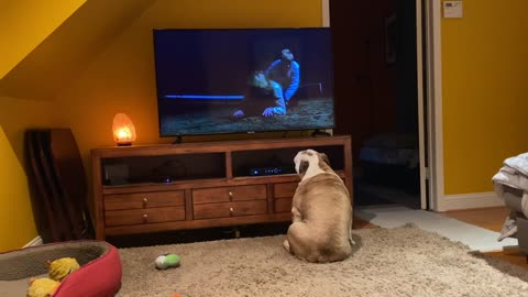 Biggest Canine Horror Fans EVER