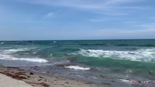 Beach, surf 🌊🏄♂️