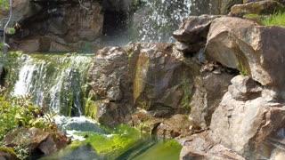 Montreal botanical garden: Waterfall