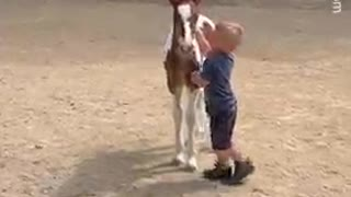 Boy and foal share a special bond
