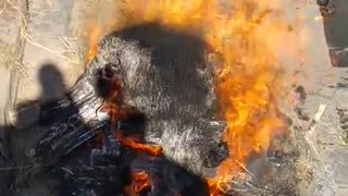 Pyre funeral ceremony, burning a corpse in Bagmati River, Pashupatinath Temple, Kathmandu 6
