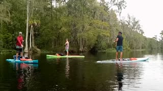 Silver Springs and River Paddle board