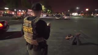 Funniest Arrest