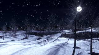 Snow Night Music| Gorgeous Piano Music for Sleeping, Calming, Studying and Meditation