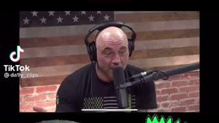 Joe Rogan talks about tripping
